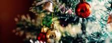 Juletræet med sin pynt – og 25.000 insekter