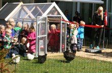 Silkehøns flytter ind på Langagergård plejecenter