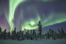 Aurora – Nordic Architecture and Design shines a spotlight on the unique features of Nordic design and Swedish architecture