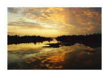 Vår nya bok Speglingar/Reflections ger ett konstnärligt perspektiv på miljöfrågan