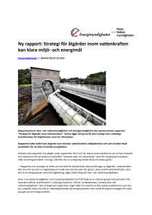 Ny rapport från Energimyndigheten och Havs- och vattenmyndigheten: Strategi för åtgärder inom vattenkraften kan klara miljö- och energimål