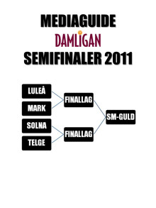 Mediaguide: Damligans slutspel 2011