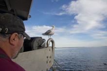 Många värden i det svenska yrkesfisket