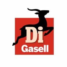 Trustly on saanut DI Gaselli-tunnustuksen kolmena peräkkäisenä vuotena