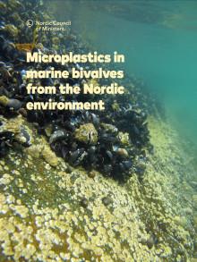 Rapport mikroplast i nordiske farvann