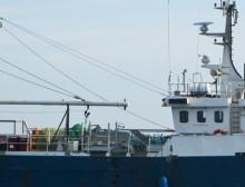 HaV avslår begäran från laxfiskare