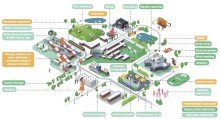 Aalto-yliopiston Otaniemen kampusta kehitetään ennakkoluulottomasti luontopääoma huomioiden