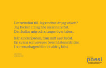 Lotta Olssons poesi