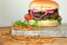 Livsmedelsverkets beslut gällande insektsbaserad mat riskerar att utplåna en bransch med stor potential