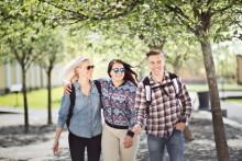 Många söker till Mittuniversitetets sommarkurser