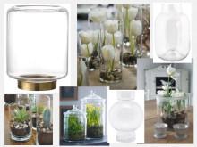 Plantera i vaser i vår!