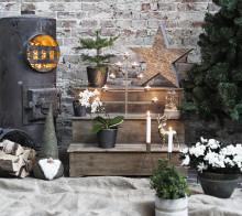 Blomsterlandet skapar julstämning