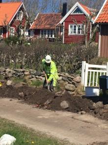 Rekordmånga väljer fiber i Höganäs kommun