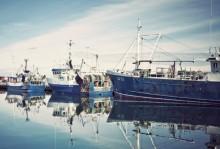 Avtal om fiske ger svenska fiskare tillträde till norsk zon