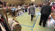 Biskopsgårdens Megaloppis nu på lördag