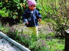 Ny kantsten från Starka ger ett lyft i trädgården