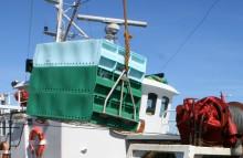 EU:s fiskekvoter för Östersjön klara – ökat fiske av sill tillåts