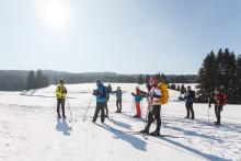 Stoneman Miriquidi on snow 2020
