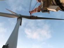 Horns Rev 3 Havmøllepark får tilladelse og bevilling til elproduktion