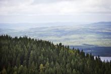 Värmlands vildmark visas upp