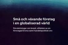 Svenska företag befarar brexitproblem