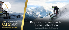 Regional ecosystem for global attraction