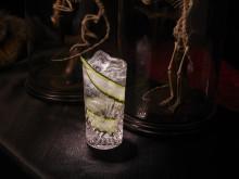 Förläng känslan av kortvecka: Så firar du Gin & Tonic-dagen nu på måndag