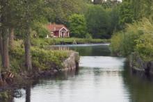1,3 miljoner till att skydda flodkräftan