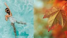Tag i svømmehallen i efterårsferien