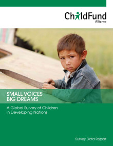 "Undersökningen ""Small Voices - Big Dreams"""