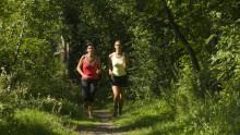 Wertvolle Tipps für ein erfolgreiches Lauftraining