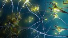 Europeisk godkjenning av Roches Ocrevus® for behandling av både attakkvis og primær progressiv multippel sklerose