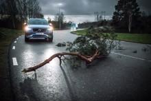 Volvo Cars och Volvo Lastvagnar delar fordonsdata i realtid med varandra för ökad trafiksäkerhet