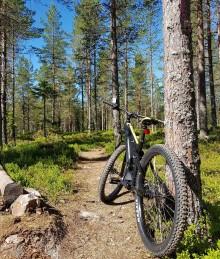 Cyklingen i Orsa Grönklitt växer med el-MTB.