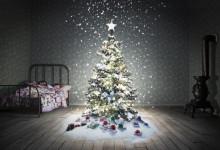 Ensam julgran söker klappar