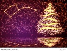 Wussten Sie schon, dass...? Ein Weihnachtsspecial