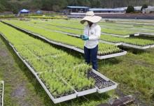 Smurfit Kappa anpassar sina klimatförändringsmål efter Science Based Target-initiativet