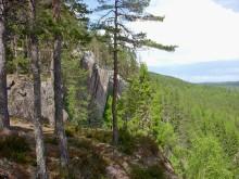 Pressinbjudan: Följ med landshövding Ylva Thörn på klättringsexkursion till Predikstolen