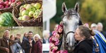 En minnesvärd höstdag för hela familjen: galopp, trolleri och höstmarknad
