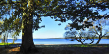 Ett år av utveckling och förnyelse för Sydvatten