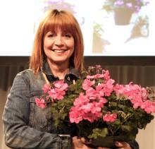 Årets Pelargon presenterad på Nordiska Trädgårdar