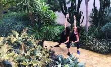 8 Days Yoga Retreat Green Marrakech January 2018