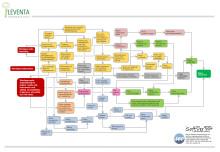 Effekten av värdegrund och kultur satsning i en organisation - grafisk presentation