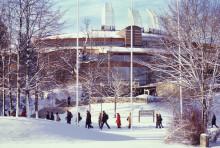 Jul, nyår och vinter ur olika perspektiv