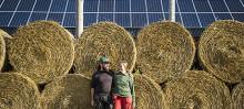 Så gör vi svenskt lantbruk fossilfritt – och mer därtill