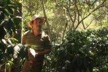 Rapport visar - Rainforest Alliance hjälper kaffeodlare förbättra sina inkomster och sociala förhållanden, samtidigt som biologisk mångfald skyddas