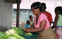 Swedfund stöjder små och medelstora företag i Afrika Söder om Sahara