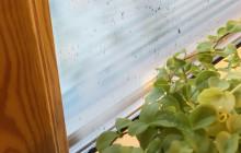 Har du problem med kondens på dina fönster?