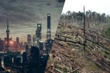 Megastäder orsakar skövlad regnskog