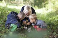 Orättvis bedömning av förskolebarn